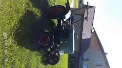 Eicher EKL 11 Oldtimer Bulldog,Traktor,Schlepper im absoluten Originalzustand!!! Foto 5