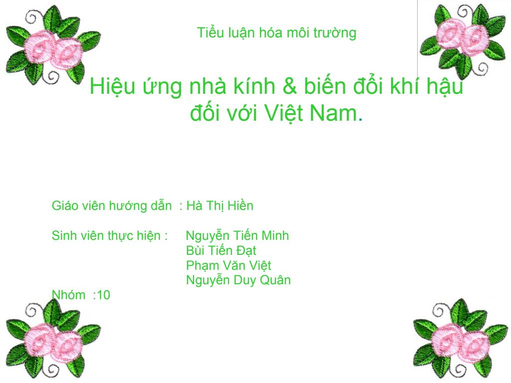 Tiểu luận Hóa môi trường: Hiệu ứng nhà kính và biến đổi khí hậu đối với Việt Nam