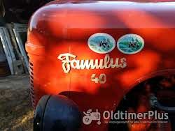 IFA Famulus RS 14/36 Foto 10