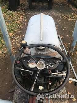 Eicher ES 202 Schmalspurtraktor Foto 5