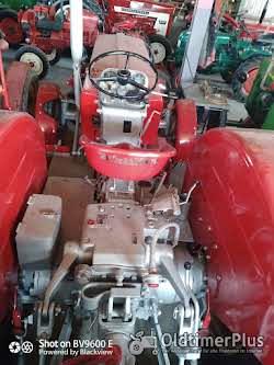 Schlüter S650 oder S400 mit Frontlader Foto 3
