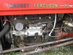 Ferguson Massey Ferguson FE 35 23C Standard photo 5