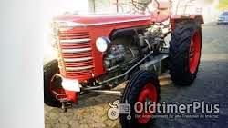 Hürlimann Traktoren die nicht jeder hat Foto 3