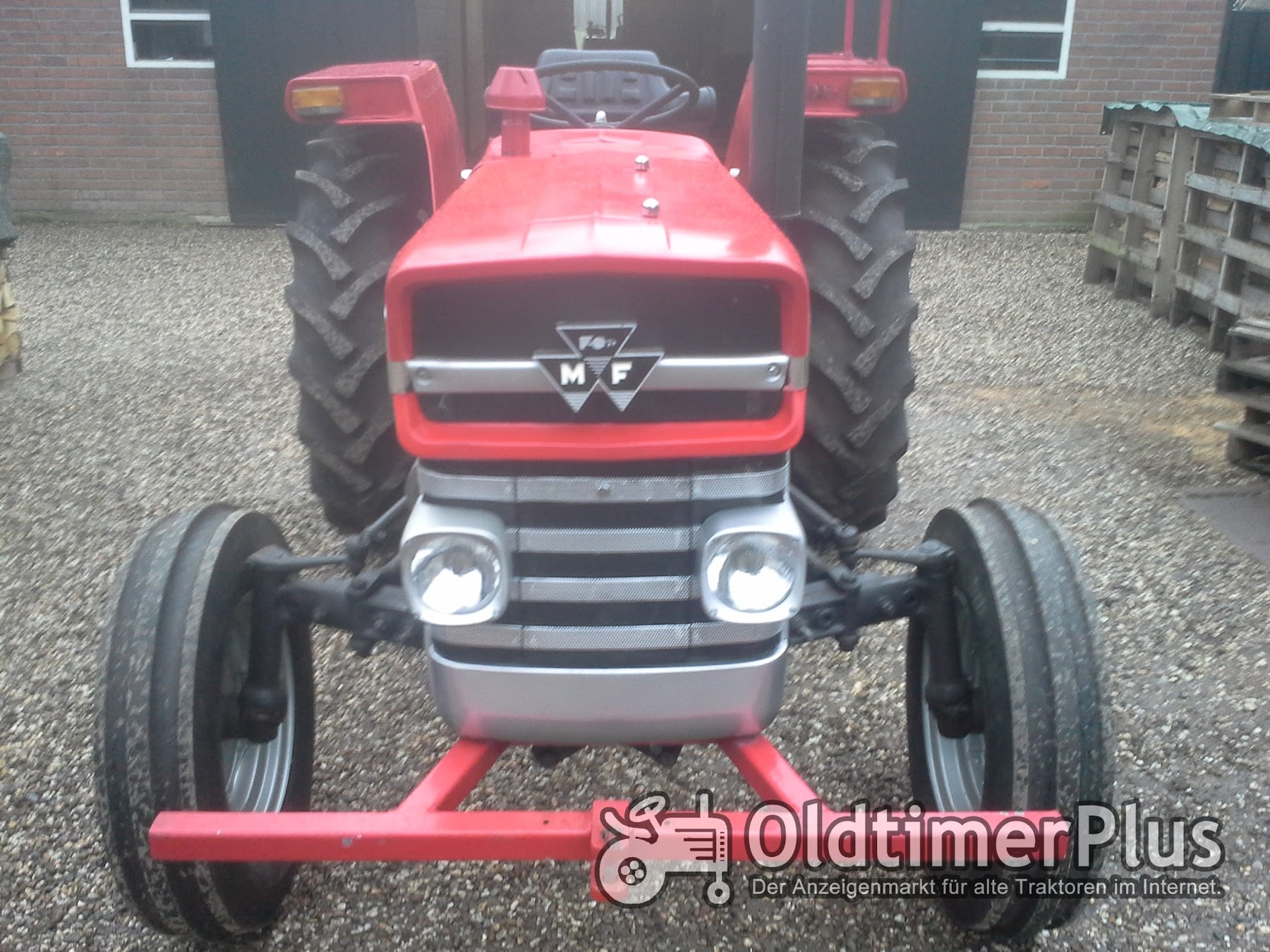 Massey Ferguson MF 135 Multipower Foto 1