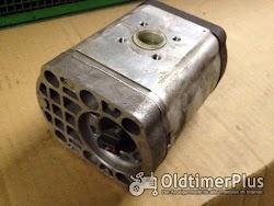Bosch Hydrozahnradpumpe 22,5 ccm Foto 2