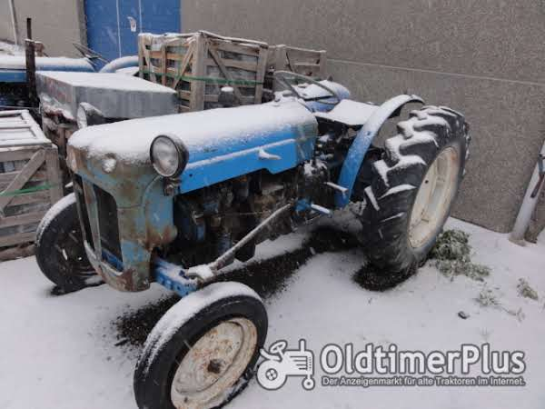 Fordson Dexta vigneron photo 1