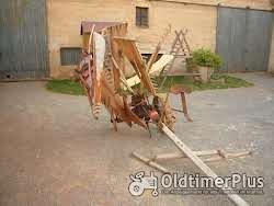 Krupp Getreidemäher ,Flügelmaschine, Getreideableger, Flügelmäher Foto 3
