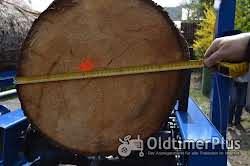 Woodpanar Sägespaltautomaten Foto 4