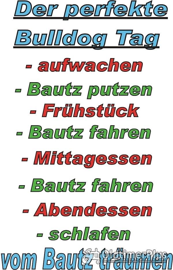 Bautz...perfekter Tag...T Shirt Foto 1