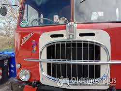 fiat tipper truck need license over 75 ton Foto 4