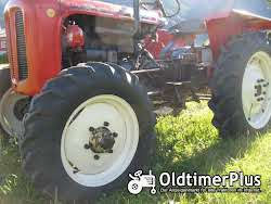 Nuffield Field Boy R 300 DT Allrad, HURTH Allrad-Vorderachse Foto 4