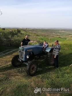 Warchalowski old tractor