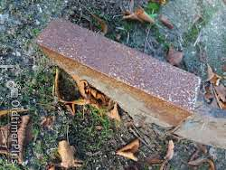 Lemken Basalt Grubber 3 meter . Foto 4