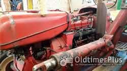 Porsche Diesel Master 419 Foto 11