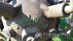 Stoll Kartoffelroder - Klein B Foto 5