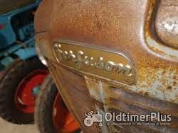 Ferguson Fe 35 Goldbauch Foto 6