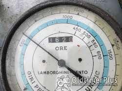 Sonstige LAMBORGHINI RAUPE – KLEINE HERKULES (ERCOLINA), ORIGINAL, NUR 3620 BETRIEBSSTUNDEN photo 4