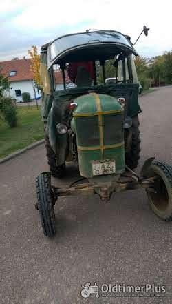 Deutz F1L514 Bauernschlepper Foto 5