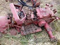 Ihc 323 Gute getriebe Foto 4