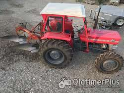 Massey Ferguson 135 allrad photo 2