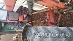 IHC 955 Allrad mit Fronthydraulik und Frontzapfwelle Foto 5