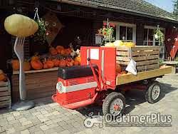 Güldner Hydrocar Foto 2