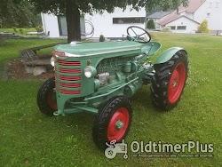 Hürlimann Oldtimer Traktoren auf Top Niveau die nicht jeder hat photo 3
