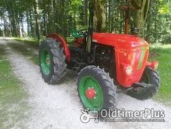 Hürlimann Oldtimer Traktoren auf Top Niveau die nicht jeder hat photo 2