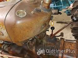 Ferguson Fe 35 Goldbauch Foto 4