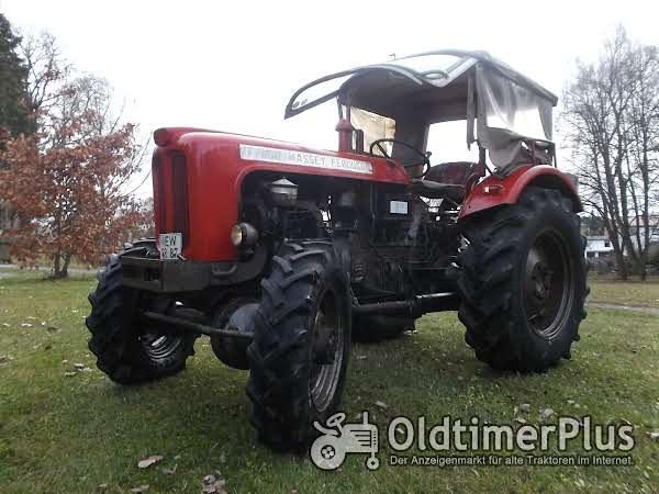 Massey Ferguson DT 7000 Allrad Foto 1