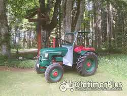 Hürlimann Traktoren die nicht jeder hat Foto 8