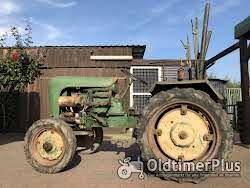 Holder Traktor Holder B 10, Baujahr 1956 mit Pflügen und Eggen Foto 7