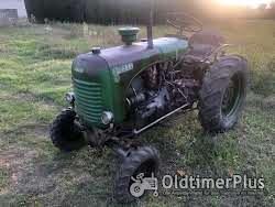 Steyr 80s(Schmalspurschlepper) Foto 3