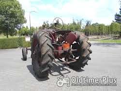 Farmall 2 Stück Mc Cormick Farmall M Foto 4