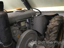 Landini Superlandini Super Landini Oldtimer Traktor Schlepper Glühkopf (testa calda) (kein Velite) Foto 4
