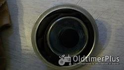 Bosch 1420503912 EPME 17 P 103 Z Ziegenfellmembrane für Einspritzpumpe Foto 3