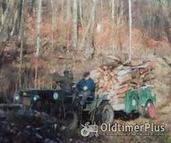Eigenbau Ackerschlepper Foto 6