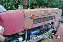 Schlüter SF6600VS 650 Allrad mit Schnellgang Foto 12