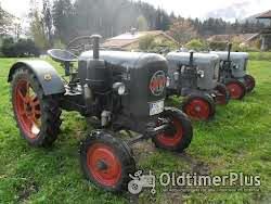 Eicher   Eicherausfahrt- Traktor selber fahrern. Wohnen im gemütlichen Ferienhäuschen Foto 4