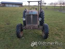 Fordson Major Typ ESK Foto 2