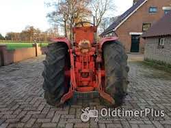 Farmall Nederland