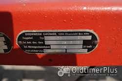 Eisenwerk Grümer Planwagen - Anhänger – Einzelstück – Typ DB 8000 – DB 80 Foto 12