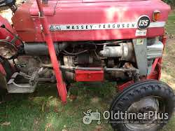 Massey Ferguson MF 135 Schmalspurschlepper ,Plantagenschlepper Foto 7