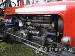 Massey Ferguson DT 7000 Allrad Foto 2