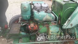 Kramer Traktor KL 300 mit 2 Zylinder Luftgekühlten Deutz Dieselmotor Foto 5