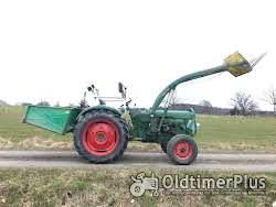 Deutz D4005 Frontlader Kat. 2 hydraulische Lenkung, viele Neuteile Foto 4