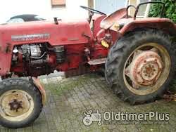 Farmall Mc Cormick D 320.Farmall. Traktor/Schlepper.