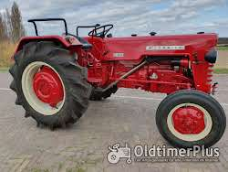 Farmall Cormick D439 gerestaureerd en gereviseerd, nieuwstaat Foto 7