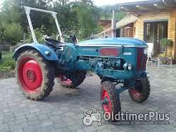 Hanomag Perfekt Rundhauber Traktor zum Herrichten oder Schlachtfest