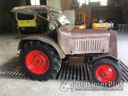 Hürlimann 4DT47L Forsttraktor lizenz saurer Foto 4